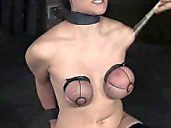 Chicoteando áspera e Breast Servidão !