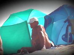 Beach Inspector v3549