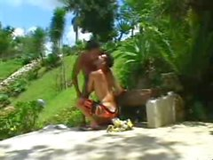 Riesenschwänze brasilien 1