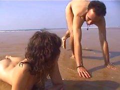 Bitch sulla spiaggia di