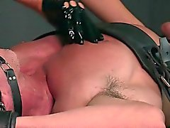 Strapped gagged slave gets fucked by mistress