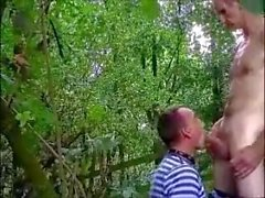 Cruisng en el bosque 1