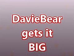 DavieBear take it BIG