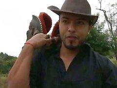 I cowboy ottenere solitaria nel mezzo della foresta di