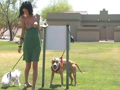 she walks her dogs and flashes her bonanzas