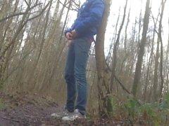 quando mi trovo nel bosco