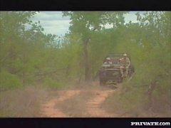 Diana esterna Ganbang del il Kruger Park