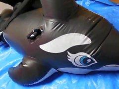 Inflaatiota orca kanne ( Japanin )