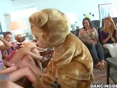 Horny Bear Fucks All The Girls