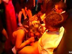 Porno Yıldızları casino partisinde musluklar alıyor