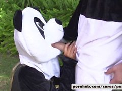 Bridgette B & Alex utveckling pandaen Modell