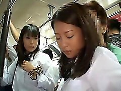 Two las colegialas tientas en autobús