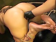 Layla gets anal sex after rimming and butt plug removal