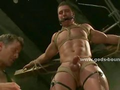 Two submissive and gay men are suspended and tied up by two dominating men that gag them
