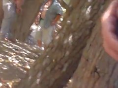 İspanyol bir ormanda Seyir