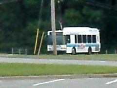Degli autobus di Howell raccogliendo sexygirl2014