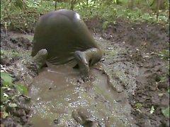 Robe de boue