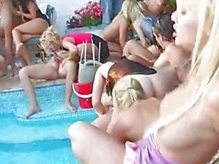 Pool super orgy