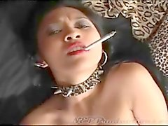 Tupakointi Fetish Dragginladies - Compilation 11 - SD 480