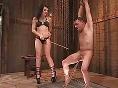 Mistress Simone Cross loves taking a switch to her slaves tiny prick