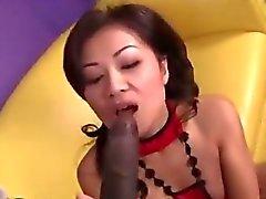 Oriental Chick