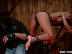 Tickler recebe Jana Cova