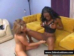 Zebra Girls - Ebony lesbian babes enjoy deep strap-on fuck 12