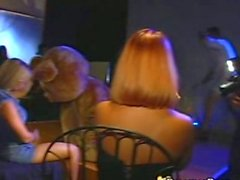 Dancing Bear Dicks on Blondes