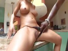 Busty blonde pornstar Bree Olson gets her pussy filled with big black dick