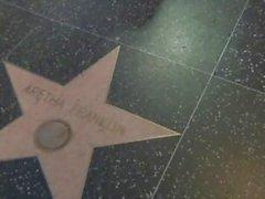 DELL'ARIA Mavericks l'Hollywood Boulevard IN