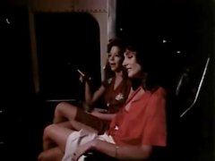 Shauna Concessione Debi Diamond Ron Jeremy nei video porno classica