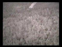 Chicas en el bosque (1962)