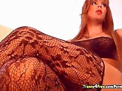 Große Brüste Shemale mit riesigen Schwanz
