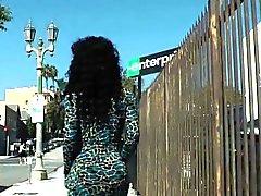 Busty cockpierced black tgirl solo wanking
