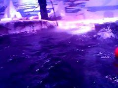 Pingvin havet i London