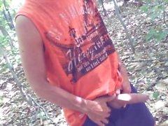 Uncut Hahn Wald Streicheln # 13
