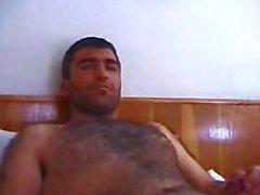 Orient-Bär - Dogan