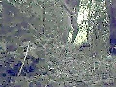 aftrekken Bad Spuiten im de Bosjes