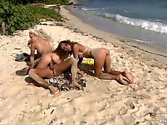 Laurens av maj och Nesty att njuta av stranden när du tar en deckare på deras Twat