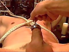 Sound and electro stim on hot young stud
