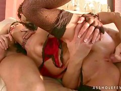 Naughty brunette gets her ass rammed
