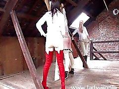 Binicilik metres - kamçılıları - ahır - kölelerin