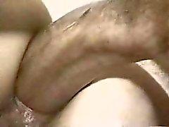 sdruws2 - da senhora nova a tomar monstro galo no asno