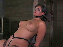 Juggy dark brown harlow acquires her slit stimulated with leather thong betwixt her cookie lips