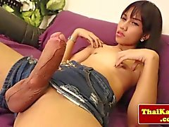Asiatische Transen