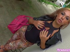 Bigtitted tgirl doggystyled beim Ruckeln