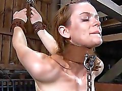 Beauty receives wild agony for her shaved cumhole