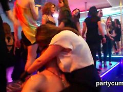 Flirty sweeties get absolutely crazy and naked at hardcore p