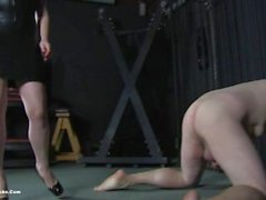 hot sexy domme ballbusting